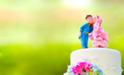 Mobile Disco Wedding Services