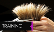 Wella Hair Colouring Kirkby-In-Ashfield